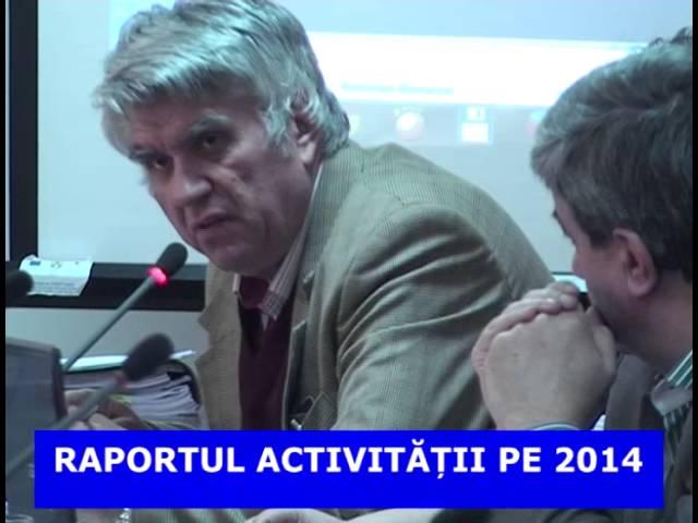 RAPORTUL ACTIVITATII PE 2014