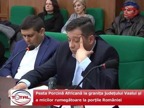 Pesta Porcină Africană la granița județului Vaslui și a micilor rumegătoare la porțile României
