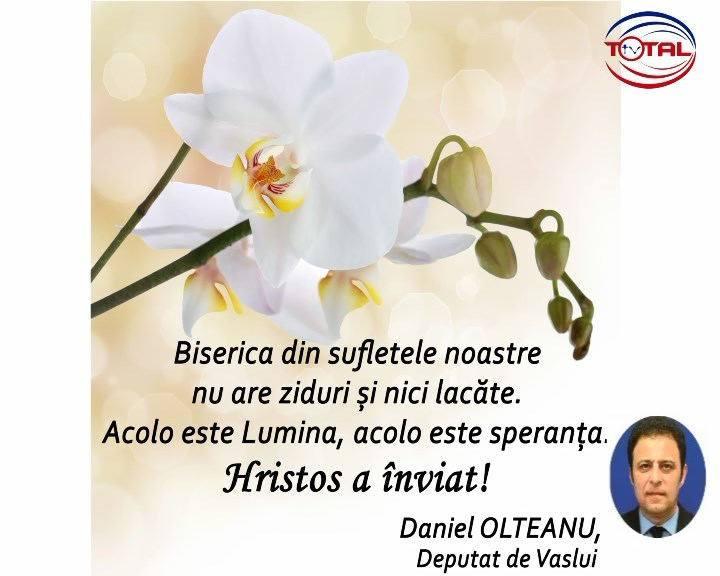 Daniel Olteanu.mpg_snapshot_00.00.498
