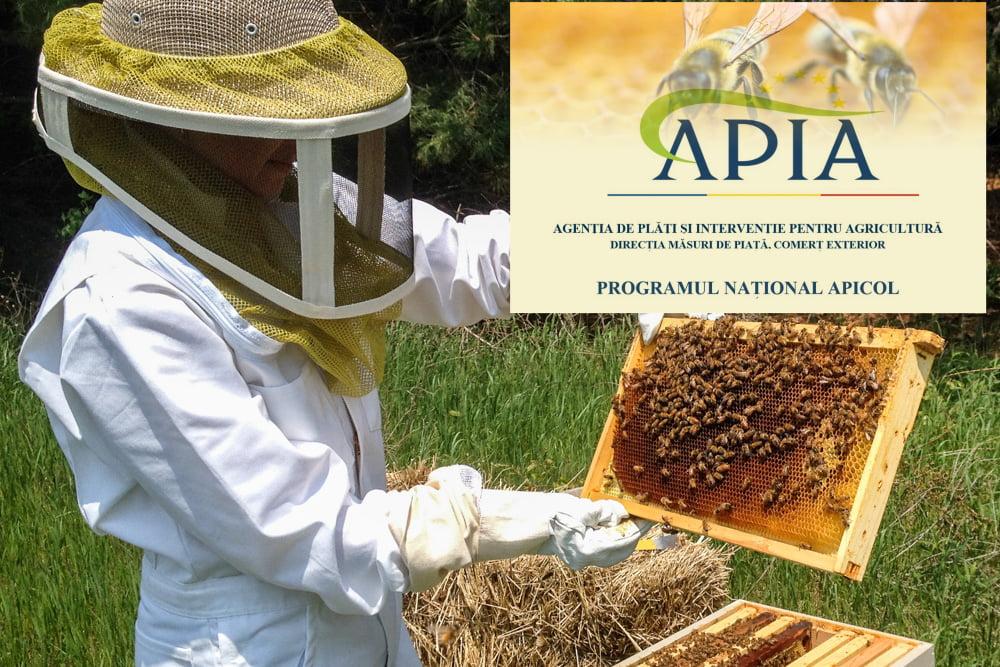 programul apicol