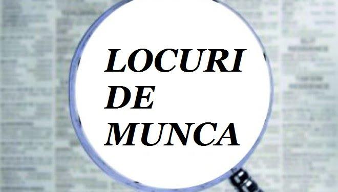 locuridemunca-1467716574